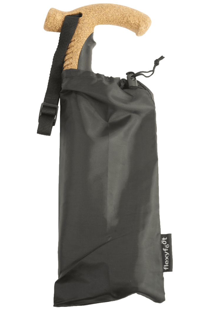 Folding walking stick with carry bag